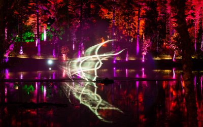 Head to the Enchanted Forest
