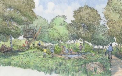 RHS Back to Nature Garden unveiled at Hampton Court Palace Garden Festival
