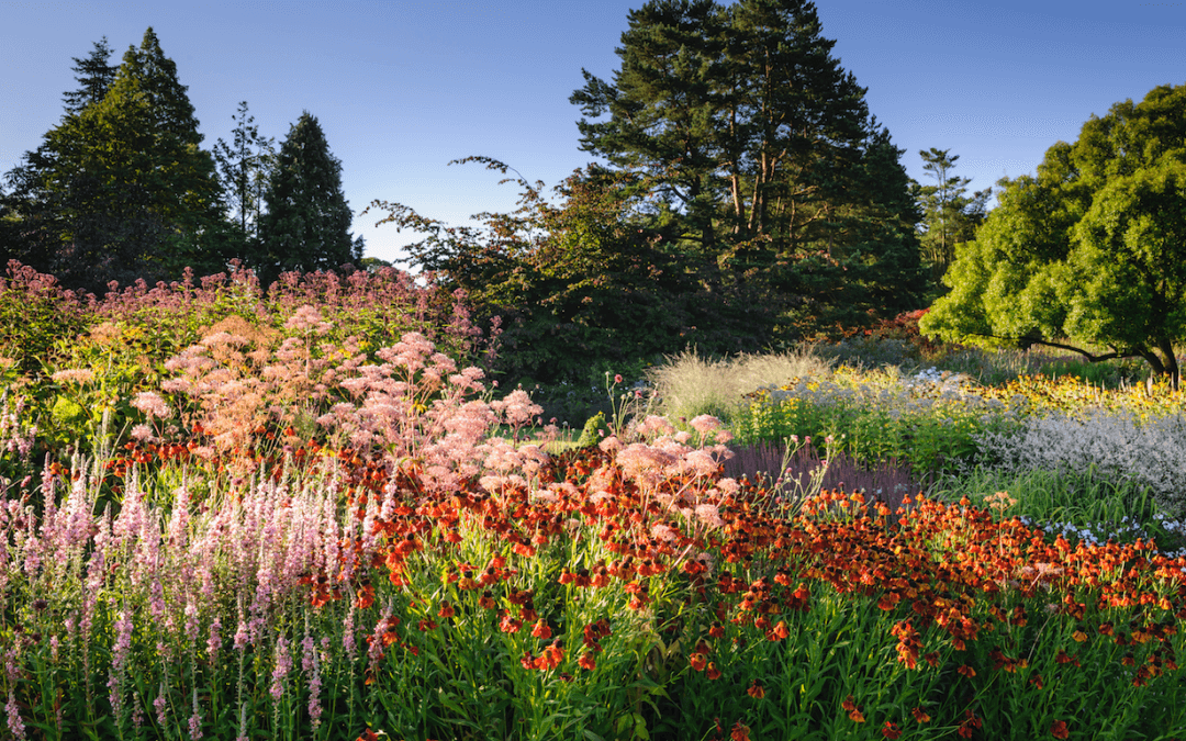 Spring events at the RHS Gardens