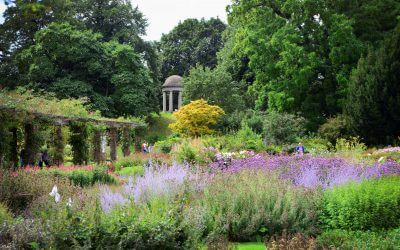 Kew to host a regal display
