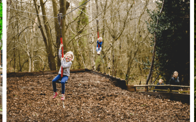New BeWILDerwood Cheshire set to open in May